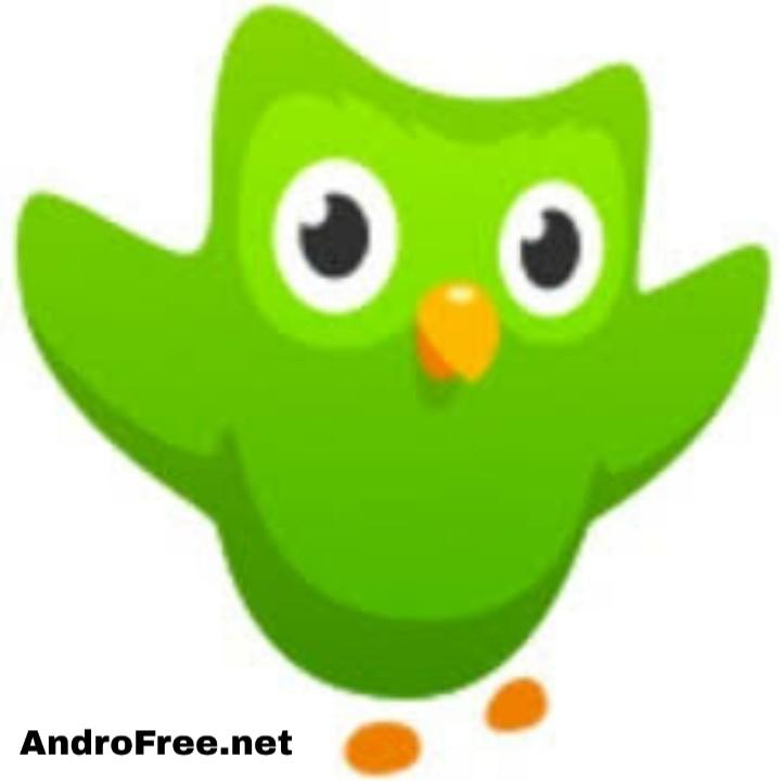 تحميل دوولينجو Duolingo APK أخر إصدار للأندرويد